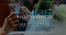 Pure Payment Systems