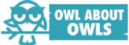 Owl About Owls