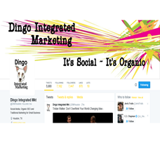 Dingo Integrated Marketing