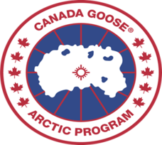 How We Improved Canada Goose's ROI by 79%